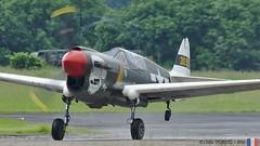 f 40 warhawk