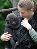 Cincinnati Zoo ... In the arms of love ... !