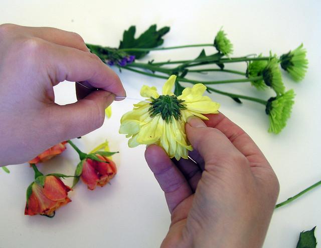 6.17.13 flowers2