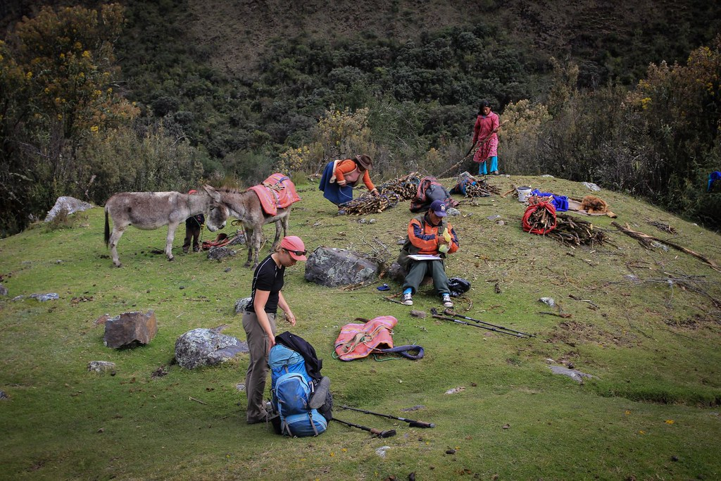 Conservation, Peruvian style. Gringos pay 65 soles (25US$) National Park fee to the ranger (orange jacket), while locals are allowed to cut vulnerable trees just at the spot. Huascaran National Park. Cordillera Blanca. Peru.