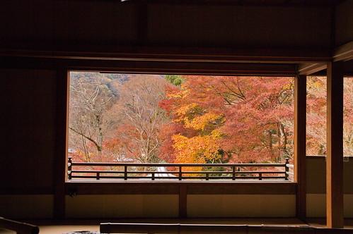 【写真】2012 紅葉 : 瑠璃光院/2020-06-07/IMGP7678