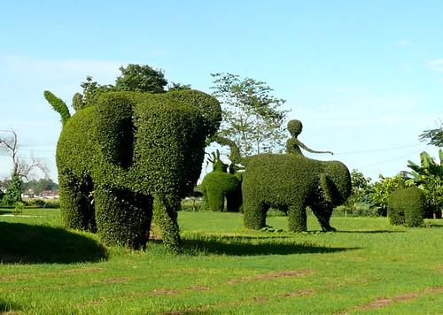 פילים וחייזרים בגן העצים המפוסלים