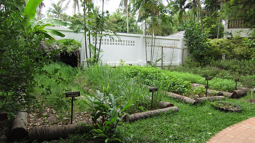 Koh Samui Paradise Beach Resort-Garden (2)