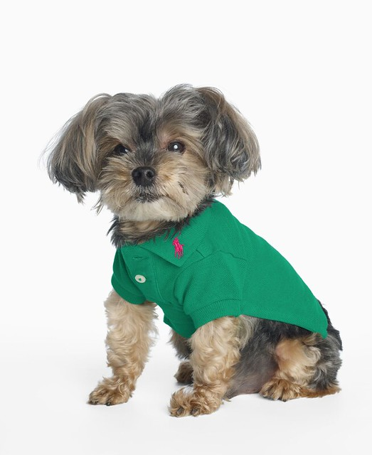 Ralph Lauren Classic Dog Polo