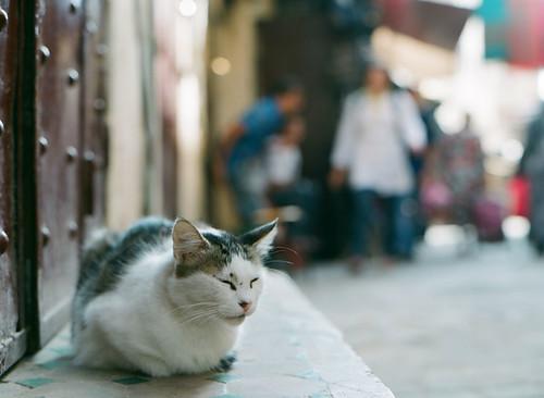 Morocco_02