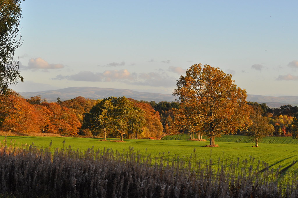 The view from the kitchen window of West Lodge Mellerstain House