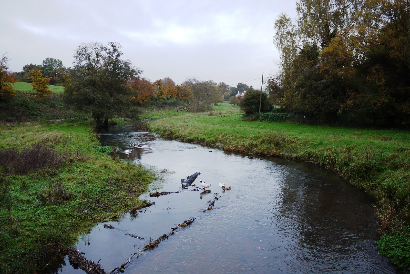 Darent River Otford to Eynsford