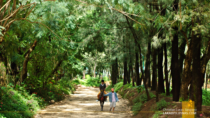 Horse Riding at Baguio's Wright Park