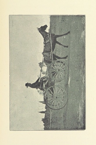 Image taken from:  Title: Wealth and Wild Cats: t...