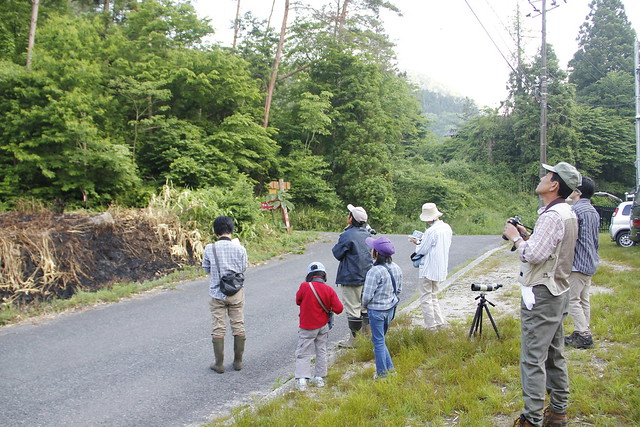 上野先生によると,林内より林緑の方が鳥の姿はよく見られるということで,この場所はベストポジション.