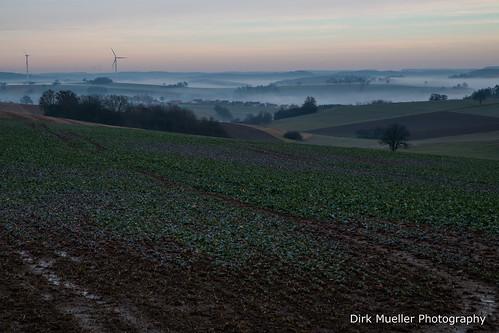 Nebel über den Feldern by Dirk Mueller Photography