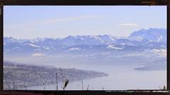 Zürichsee mit Glarner Alpen