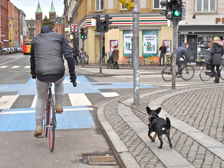 Walking the dog Copenhagen style
