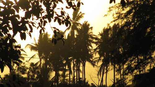 beach sunrise palms 2014 piura chiclayo pimentel