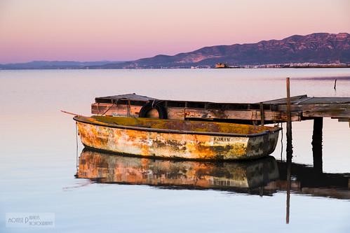 del sunrise lights golden alba delta catalonia catalunya nou poble deltadelebre