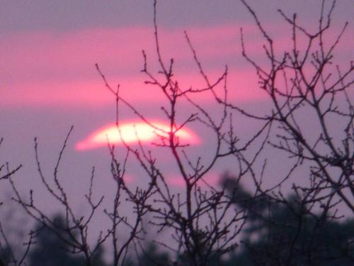 sunset sun streets rain sunrise heaven himmel wolken neighbours sonne nachbarn homesweethome regen februar spaziergänge streetlive