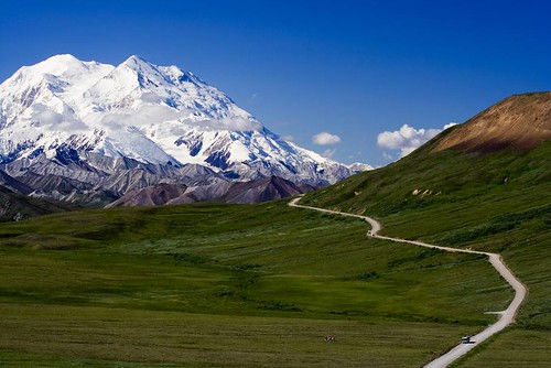 Denali-National-Park-Alaska-5
