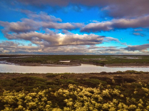 ca bay san francisco wildlife national don drawbridge edwards refuge