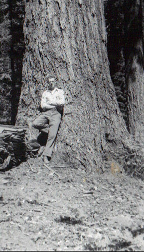 Dick Fitzgerald rests against a towering Douglas fir at Bagby Hot Springs on the Mount Hood National Forest where he was serving as a junior forester during a summer day in 1957. (U.S. Forest Service)