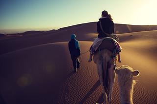 Sahara - Erg Chigaga | Roland Krinner