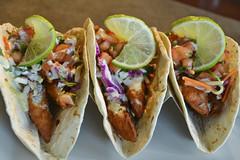 lunch, taco, produce, food, dish, cuisine,