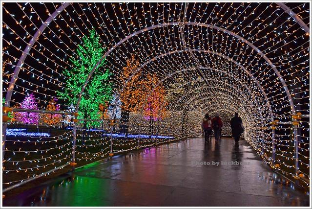 大阪城3D燈光秀2015004-DSC_3859
