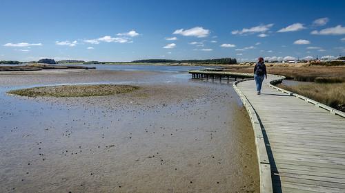 Invercargill Estuary Walkway