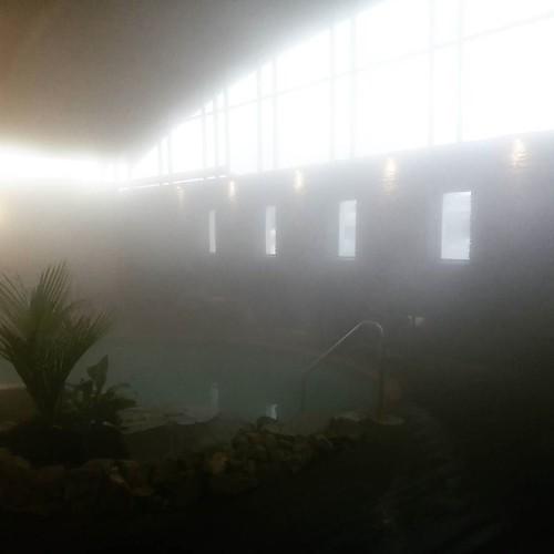 温泉の湯気がすごい #airnzjp #link_nz #rotoruanz