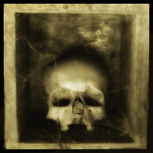 Skull 6, foto Augusto De Luca