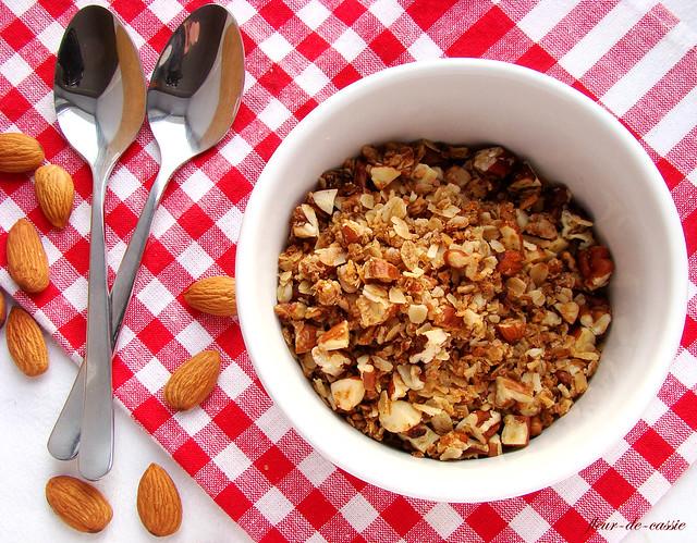 гранола с миндалем, пеканом и кокосом 2