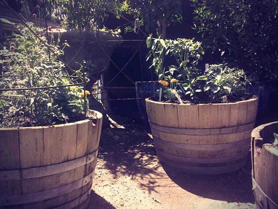 Baker Nursery: Local Love : Upward Projects Blog