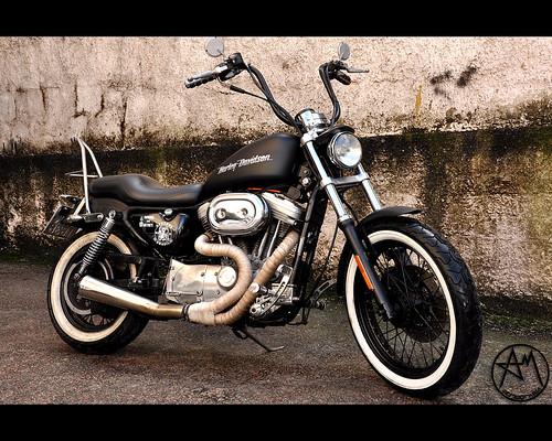 Harley Davidson Standart 883 1997