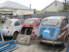 automobile(1.0), fiat(1.0), vehicle(1.0), fiat 600(1.0), seat 600(1.0), subcompact car(1.0), city car(1.0), zastava 750(1.0), antique car(1.0), vintage car(1.0), land vehicle(1.0), motor vehicle(1.0),