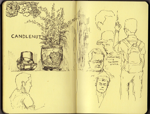 Candlenut and other sketches