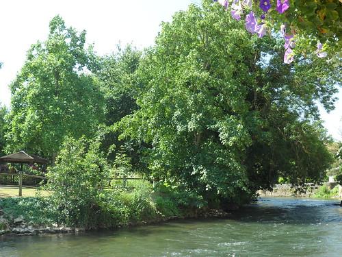Rivière Le Clain 4