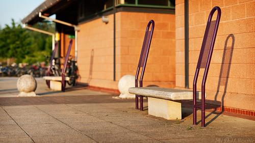 cambridge light sunset bench dof pr parkandride hbm trumpington benchmonday erlauag