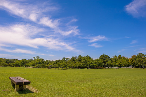 park blue sky cloud tree green field grass japan bench nikon f14 24mm nikkor nara afs d3s