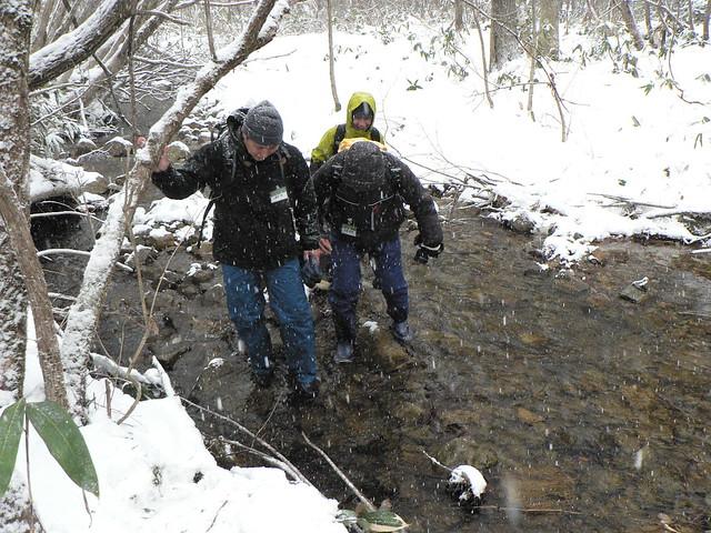 雪原より,小さな川をわたり山の中へ.