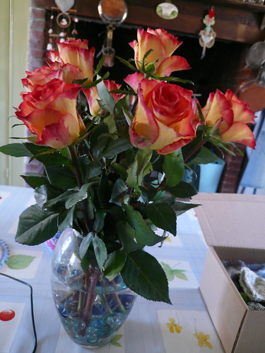 Roses from Barbara and Tim