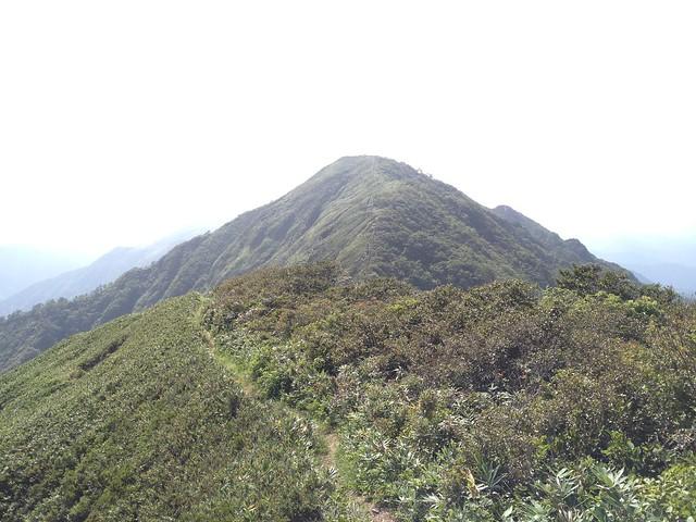 金草岳 遠景