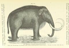 """British Library digitised image from page 485 of """"Bibliothek geographischer Handbücher. Herausgegeben von ... F. Ratzel"""""""