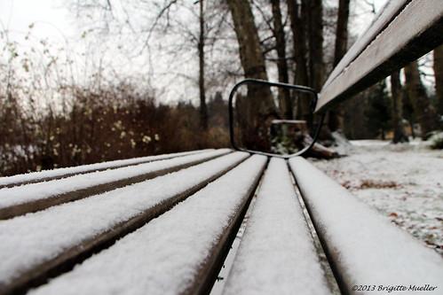 Winter Rest Stop