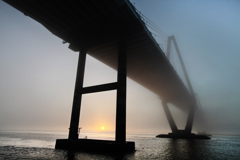 web_fog_ravenel_0011