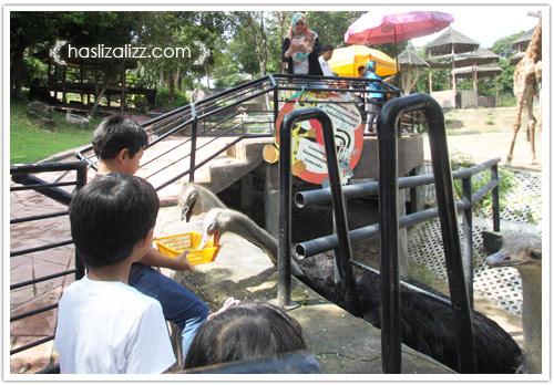11713417023 342fa106ae o BERCUTI DI HATYAI THAILAND PART 6   songkhla Zoo
