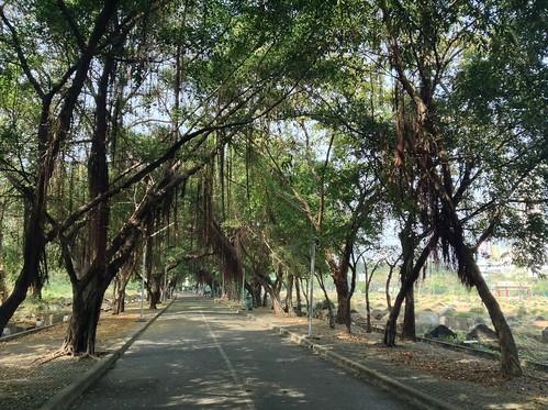 曼谷华人墓园