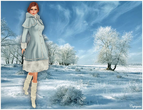 Winter Time For  MAAI by ♥Caprycia♥