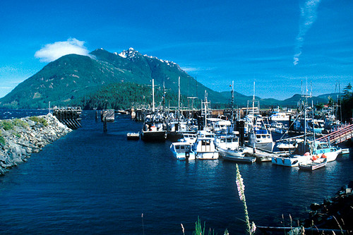 Kelsey Bay backed by Mount Hkusam, Sayward Valley, Vancouver Island, British Columbia, Canada