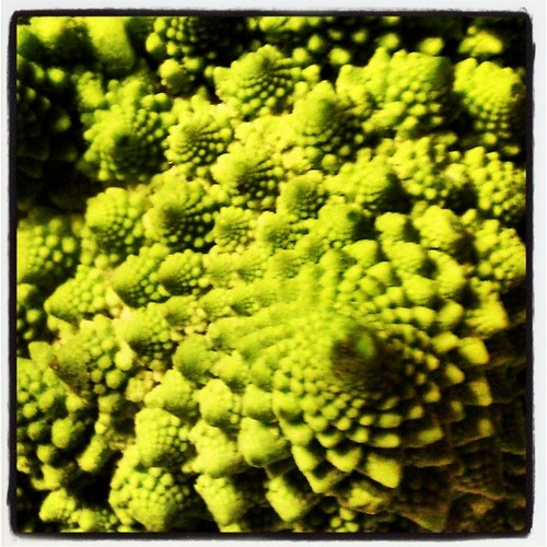 Edible fractals #waldorf #math #food #wholefood #csa #farmfreshtoyou