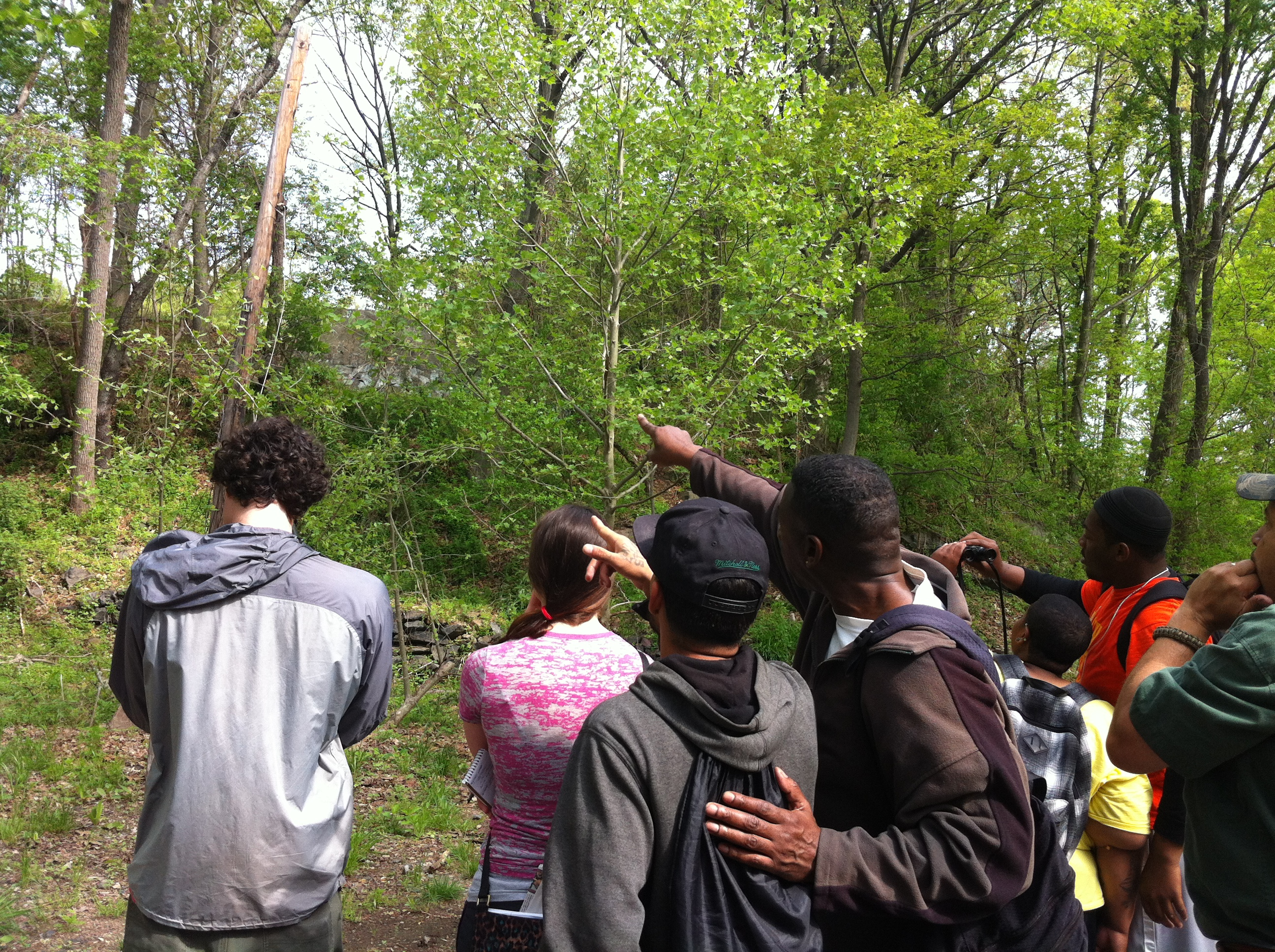 5/10 Bird Walk in Tacony Creek Park
