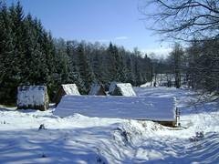 impresii de iarnă/winter impressions